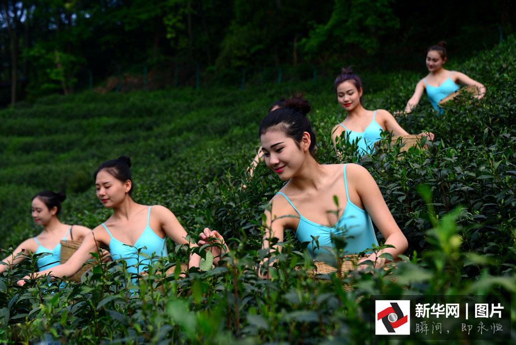 Des filles prennent part à une séance de yoga dans un jardin de thé à Hangzhou, dans la province du Zhejiang, le 17 avril 2016. (Xinhua/VCG)