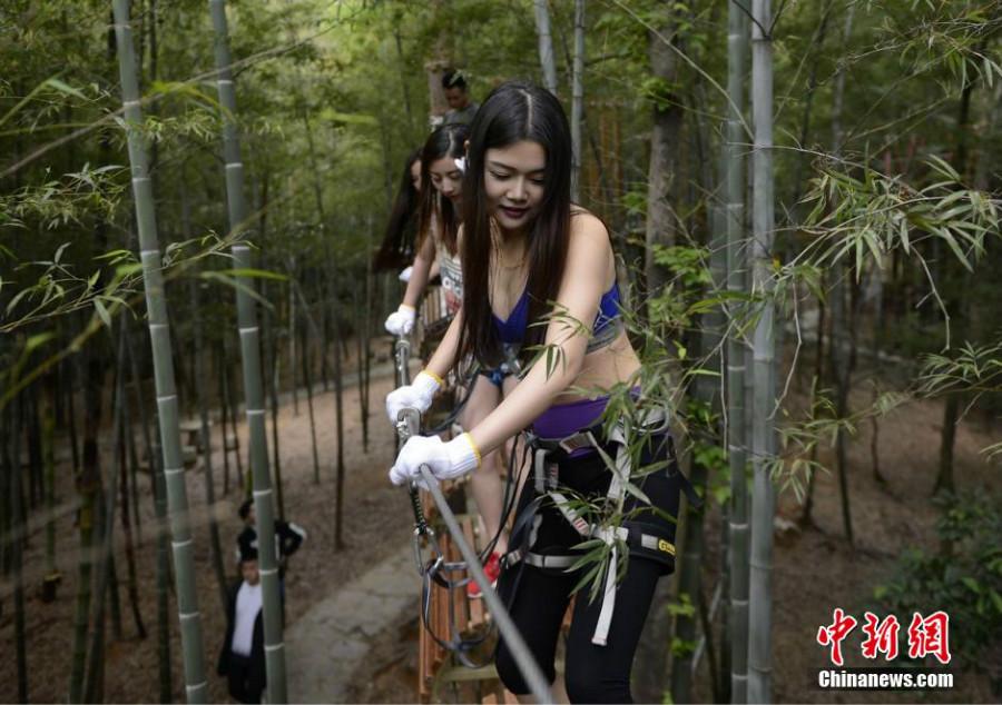 Chine : un parcours aventure dans les arbres qui a du charme