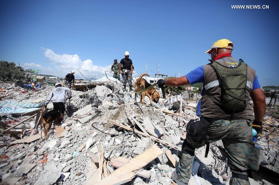 Число погибших возросло до 525, свыше 4 тысяч человек получили ранения