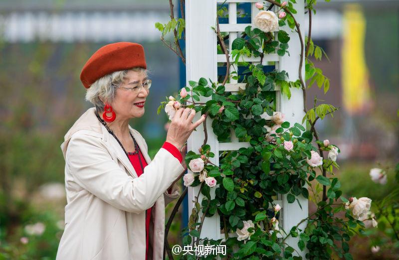 Quatre mamies chinoises très chics deviennent les stars des réseaux sociaux