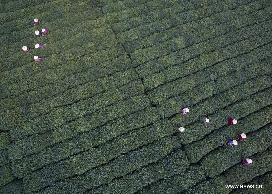 HANGZHOU, 25 mai (Xinhua) -- Vue aérienne d
