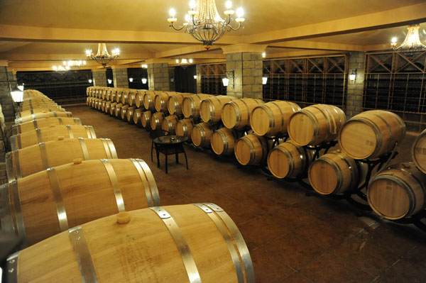 Viaje por Ningxia: Colinas este de montañas Helan constituyen hogar de vinos chinos