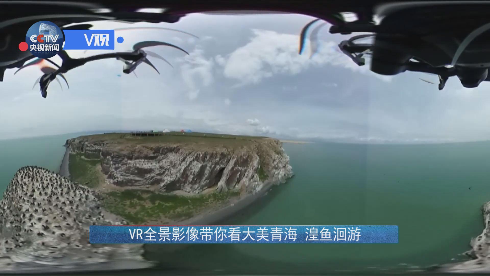 [独家V观]VR全景视频带你看大美青海湟鱼洄游信承影像国图片