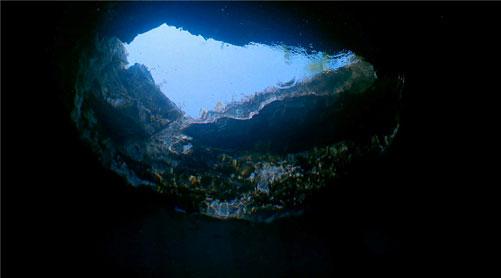 微信头像山水鱼