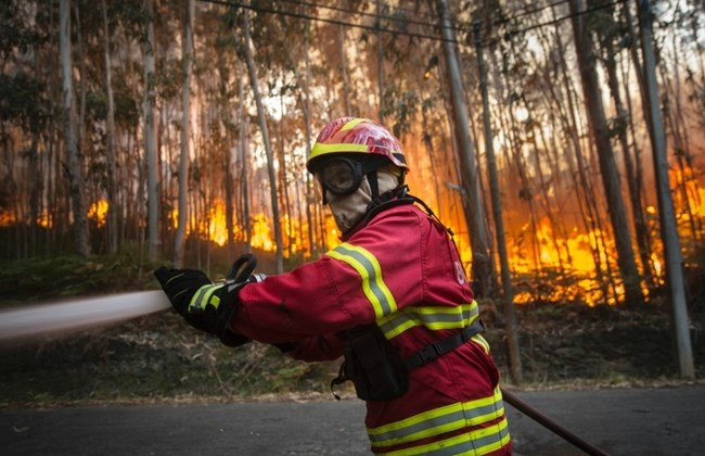 A firefighter tries to extinguish a wildfire