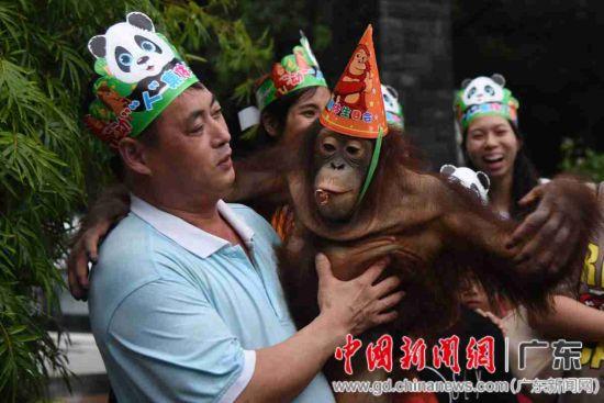 """动物园饲养员带着红毛猩猩参加""""动""""""""人""""生日会"""