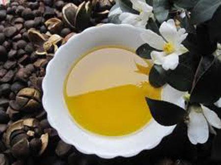 从左至右:油茶种子、成品茶油、油茶花