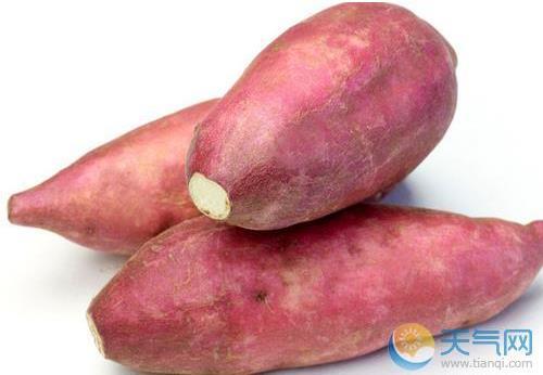 白露节气适合吃什么蔬菜