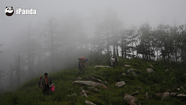 工作人员带着日常用品进山(图:佛坪保护区提供)