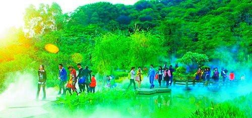 海沧大屏山公园烟雾缭绕,宛如人间仙境.