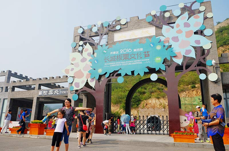 长城板栗文化节