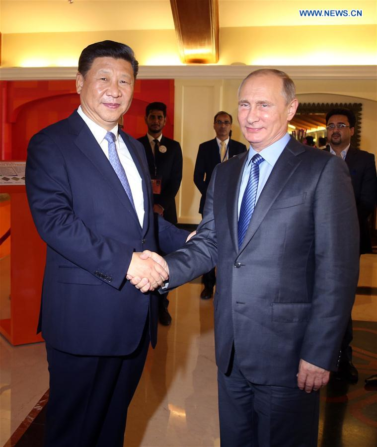 Chinese President Xi Jinping meets with Russian President Vladimir Putin in the western Indian state of Goa, Oct. 15, 2016. (Xinhua/Yao Dawei)