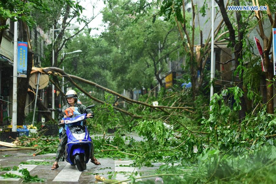 Branches are broken in typhoon-hit Qionghai City, south China
