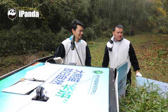 吴代福(右)与工作人员撤离大熊猫放归笼舍
