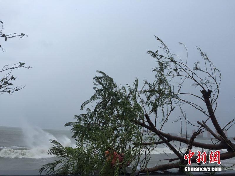 Severe typhoon Haima makes landfall in south China