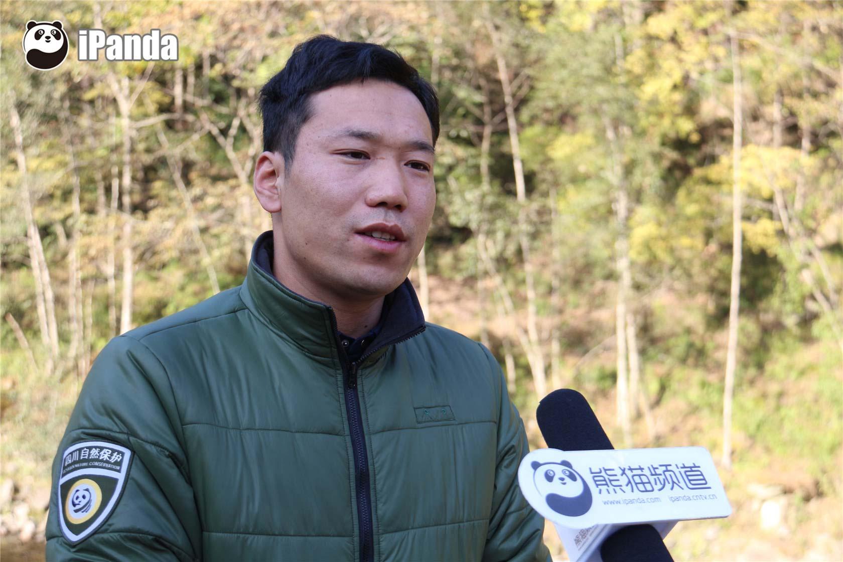 首届国际大熊猫节正式开幕