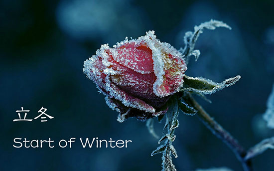 The traditional Chinese lunar calendar divides the year into 24 solar terms. Start of Winter, (Chinese: 立冬), the 19th solar term of the year, begins this year on Nov 7 and ends on Nov 21.