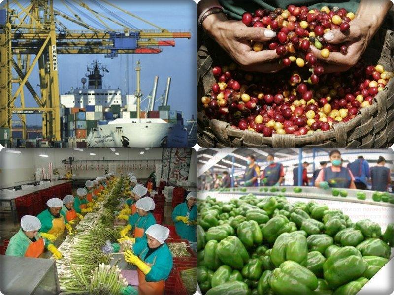Reuniones en Perú se centran en el libre comercio regional y la conectividad