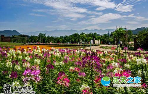 万州武陵石桥水乡湿地公园