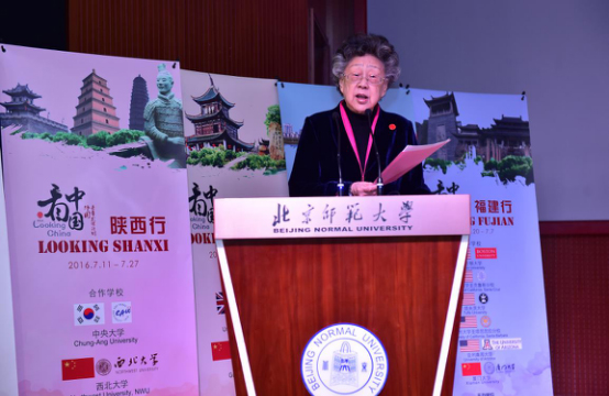 Хуан Хуэйлинь, Основатель проекта Looking China
