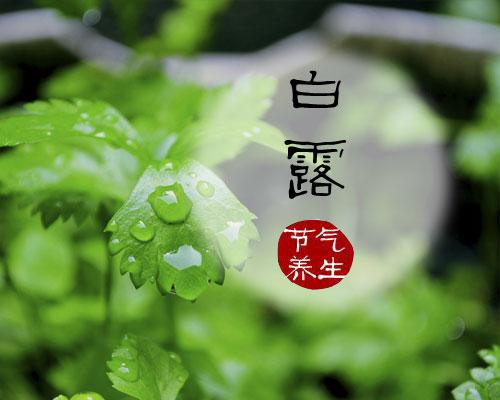 信息中心 节气养生雨水:宜疏肝理气,健脾祛湿   春天喝什么如油菜