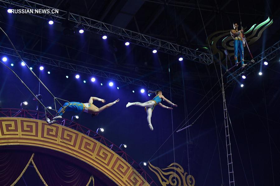 Классическое цирковое представление на III Китайском фестивале акробатического искусства в Лояне