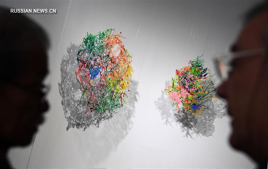 Свет и краски на выставке в Тайбэе