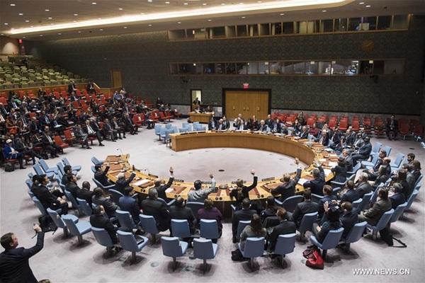شينخوا/صورة الأمم المتحدة/Amanda Voisard
