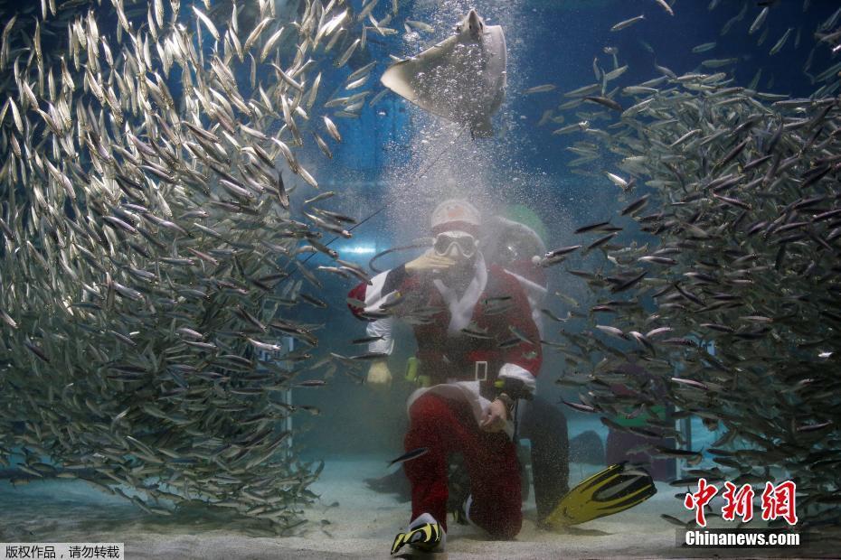 Santa Claus waltzes with sardines in Seoul