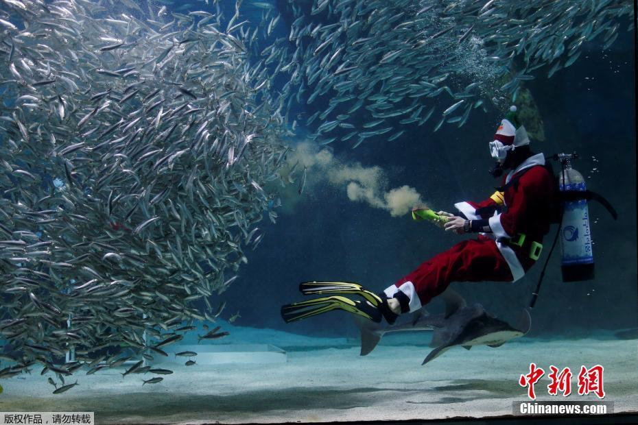 Santa Claus waltzes with sardines in Seoul