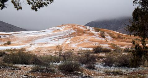 Picture taken on December 19, 2016 shows the snow covering the sand in the Sahara Desert near the town of Ain Sefra, Algeria. Snow has fallen in the Sahara Desert for only the second time in living memory. [Photo/IC]