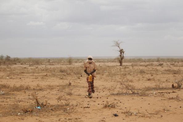 Aide internationale demandée alors que la nourriture manque