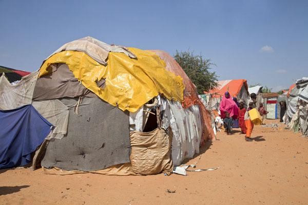 3 millions de dollars pour les réfugiés de Dadaab
