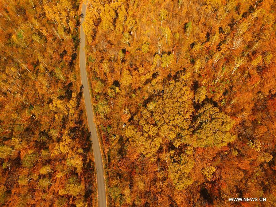 Photo aérienne prise le 2 octobre 2016 montrant le paysage d