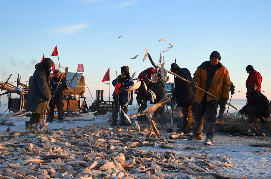 La saison de la pêche sous la glace est ouverte