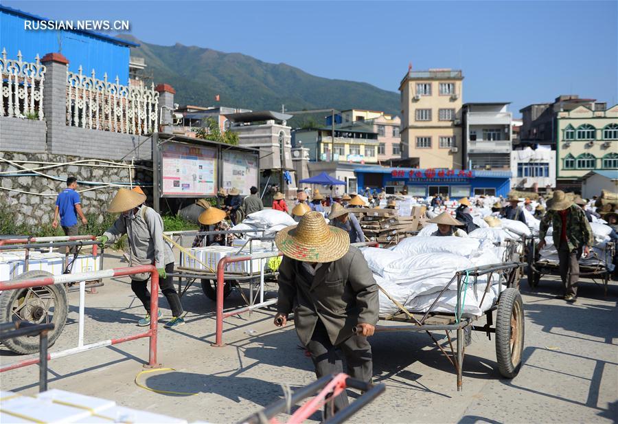 Рост пограничной торговли в Гуанси провысил 60 процентов