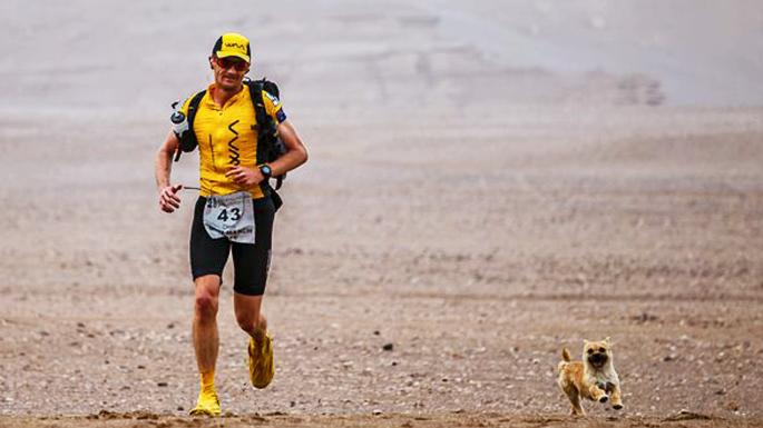 Dion Leonard and a stray border terrier became stars of the desert marathon in China in June 2016.