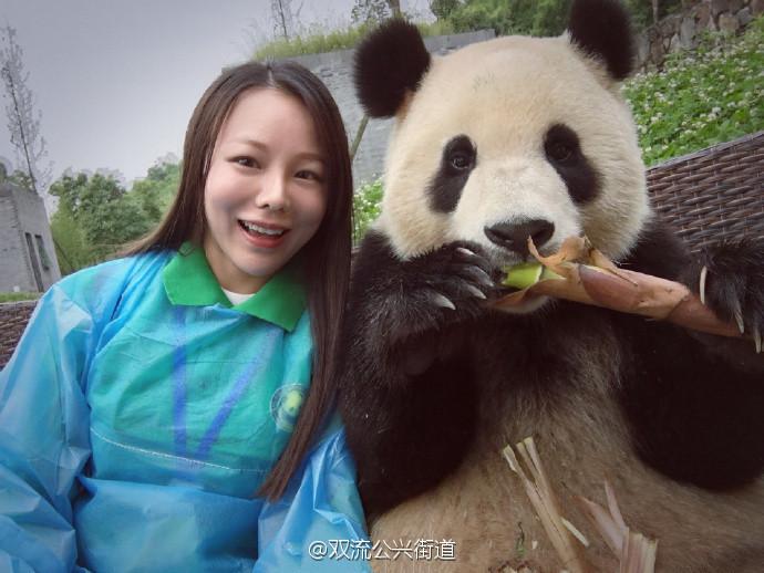 Une fille prend des selfies avec un panda dans la Réserve de Wolong, le plus grand centre d