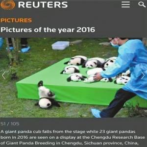 Reuters la clasificó la mejor de 2016
