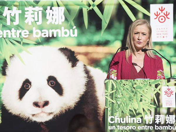"""1月12日,克里斯蒂娜·西富恩特斯主席出席大熊猫""""竹莉娜""""命名仪式 。"""