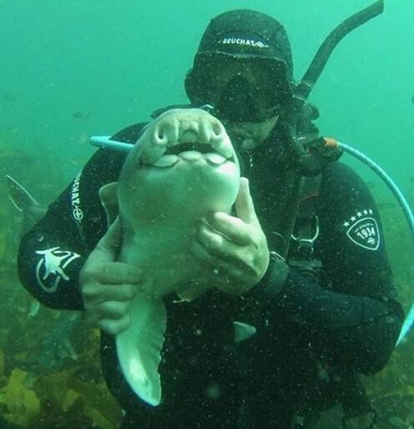 Anderson la abraza en el mar