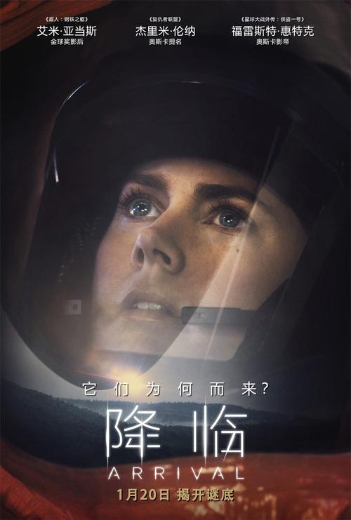 电影《降临》女主角艾米·亚当斯