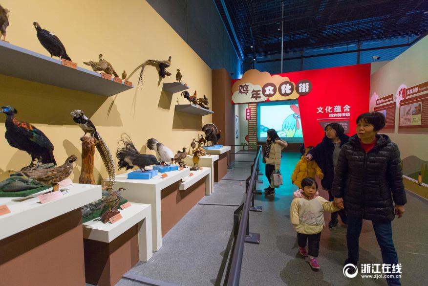 Exposition de coq dans la province du Zhejiang