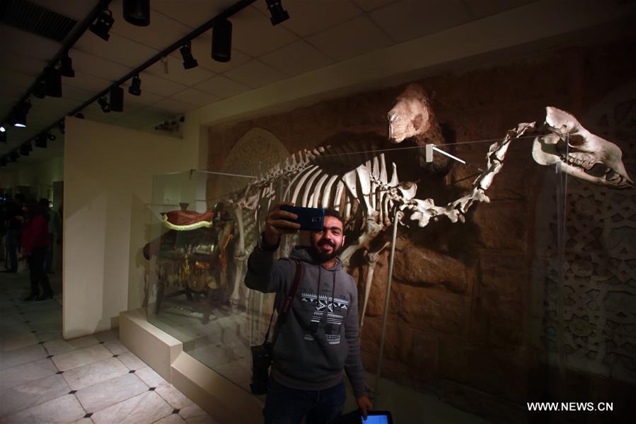 إعادة افتتاح متحف الصيد بالقاهرة