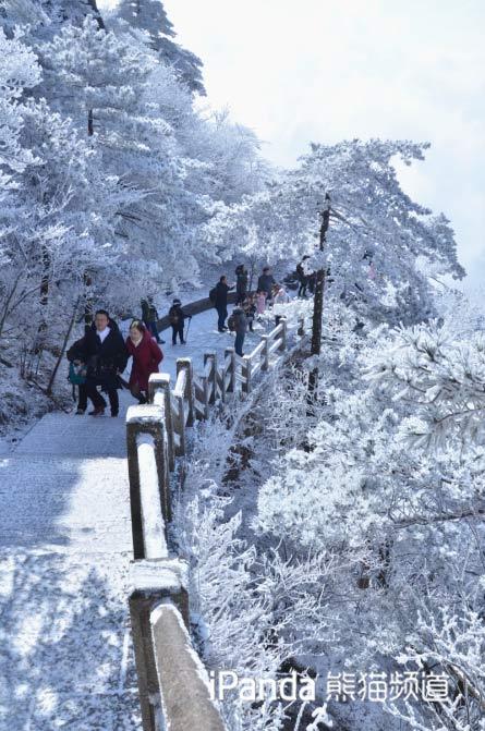 黄山雪后美景 余建辉 摄