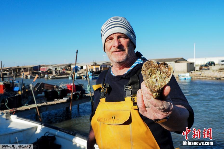 Des huîtres en forme de coeur pour la Saint-Valentin
