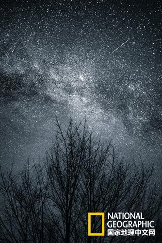 """""""你的一句晚安,可以媲美满天星光。"""""""