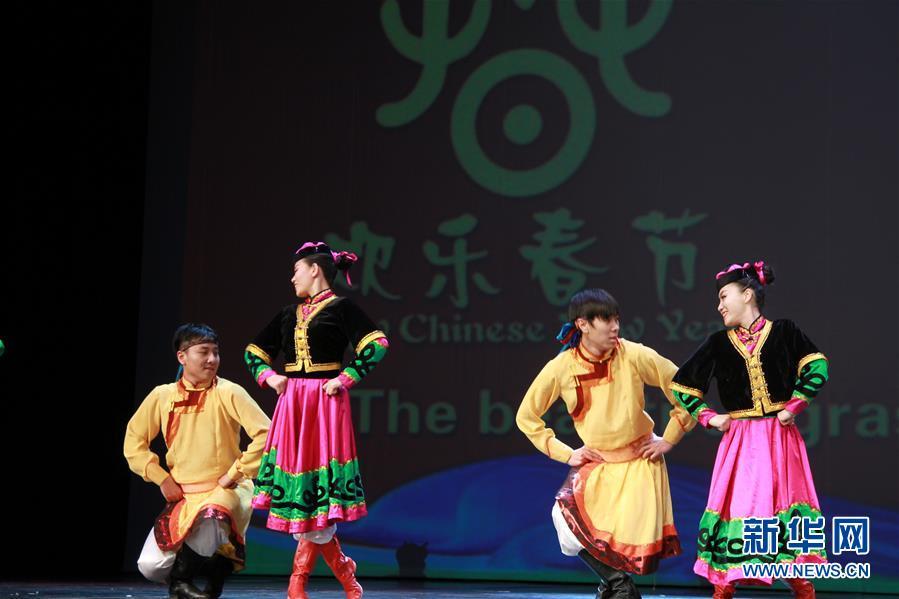 العروض الفنية الصينية تحظى بإقبال كبير في الجزائر