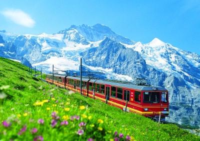 fm811瑞士电路图