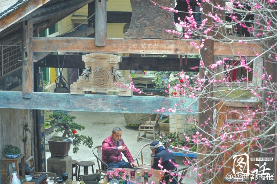Bajo las puertas del dragón, Li Xiaochun disfruta de una taza de té y observa las flores de melocotón en el patio